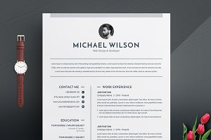 3 Pages Clean CV Template | MS Word