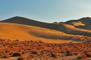 The greater sandy dune Eureka on sun