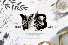 Friday Blush collection by  in Illustrations