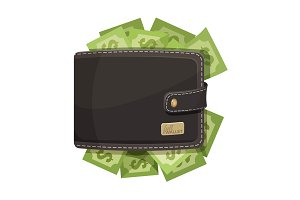 Leather wallet icon full of money