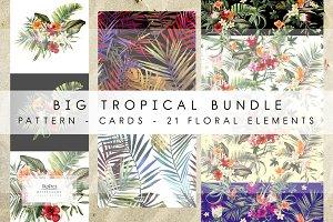 Big tropical bundle & 21 elements