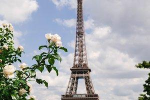Paris Views