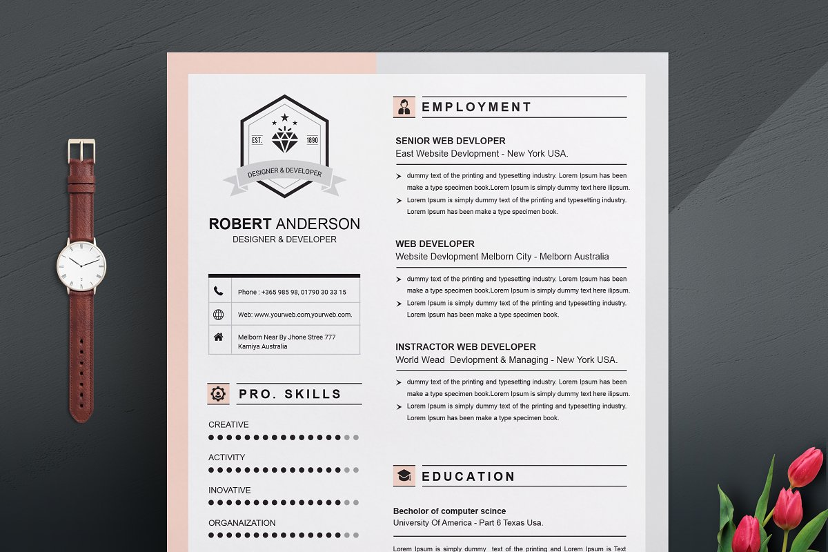 Resume Template | Apple Pages ~ Resume Templates ~ Creative Market