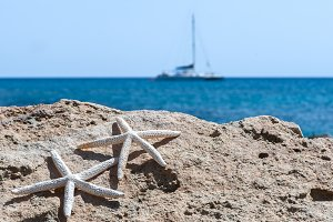 Sea, sand, rocks and starfish