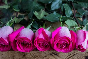 bouquet of pink roses on a wooden ba