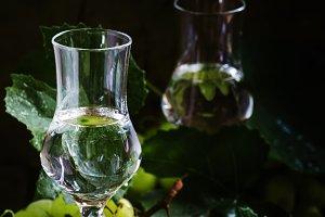 Traditional Italian vodka, still lif
