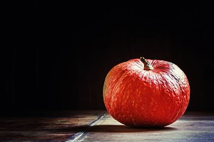 One pumpkin on dark wooden backgroun
