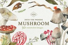 Mushroom Watercolor Clipart Set by  in Illustrations