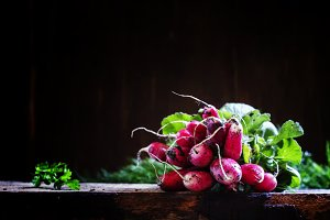 Bunch of dirty radishes with leaves,