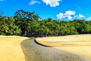 Stream on Cow Bay Beach