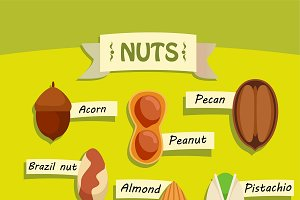 Flat Natural Nuts Elements Set