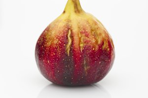 Fresh fig. Food Photo.