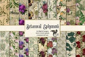 Botanical Ephemera Digital Paper