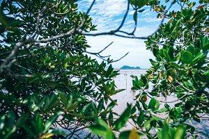 Beautiful View of Tropical Island