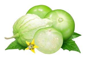 Physalis or Tomatillo