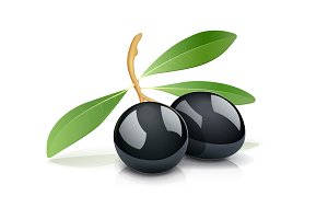 Two black olive with leaf