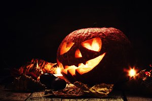 Halloween pumpkin, dark wooden backg
