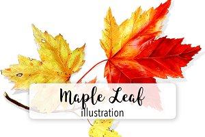 Leaves: Vintage Maple Leaf