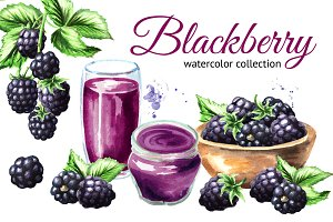 Blackberry. Watercolor collection