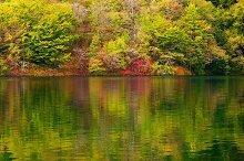 Lake in forest, Croatia