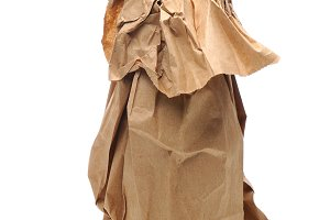 Beer Bottle in Paper Bag