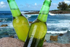 Beer Bottles in the Sand
