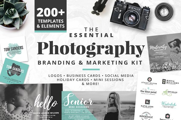 Logo Templates: Brandi Lea Designs - Photography Branding & Marketing Kit
