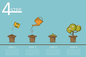 Plant growing step vector