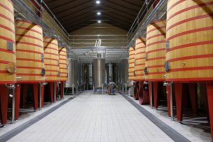 Interior of a wine cellar of the