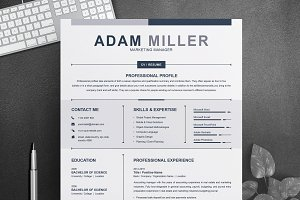 Clean Resume / CV Design