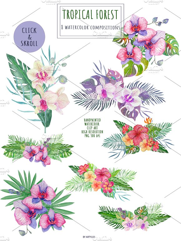 Tropical Forest Watercolor Set in Illustrations - product preview 2