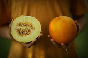 ripe fragrant yellow melon in human