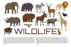 Vector poster of wild animals
