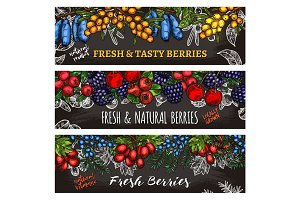 Banners of farm and forest berries
