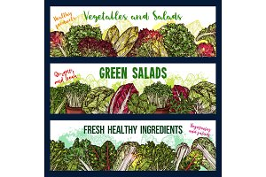 Banners of salads vegetables