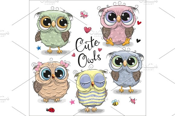 Set of  cartoon owls on a whit