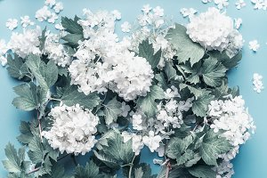 Pastel flowers blooming on blue