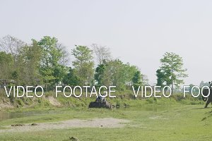 Elephant safari with tourists in