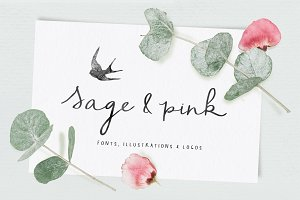 Sage & Pink Font and Logos