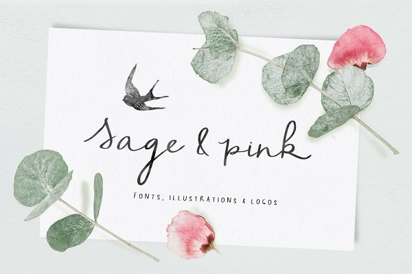 Script Fonts: pixelbypixel - Sage & Pink Font and Logos