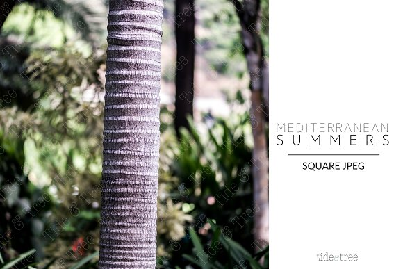 Med Summers | Square No. 18