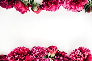 Peony flowers border
