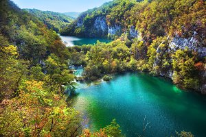 Lakes in forest, Croatia