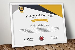 Company Certificate Word Design