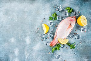 Fresh raw tilapia fish