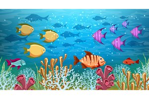 Underwater life panorama