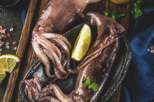 Fresh raw whole squid