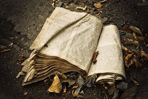 Old dirty open book lying on ground
