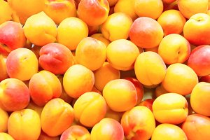 Many fresh apricots on farm market