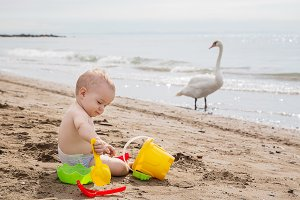 Cute baby boy playing with beach toy